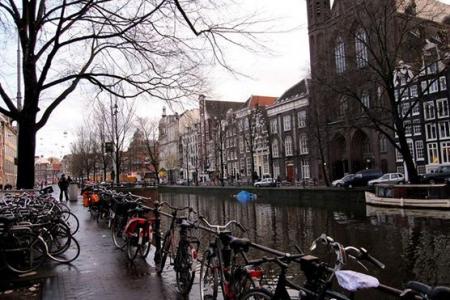 voli transavia per amsterdam