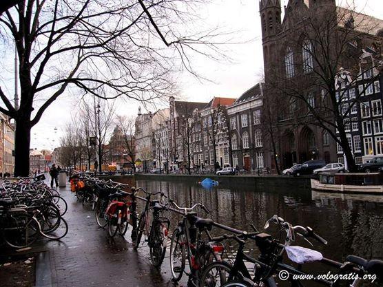 Voli transavia per amsterdam monaco e altre destinazioni for Amsterdam offerte viaggi
