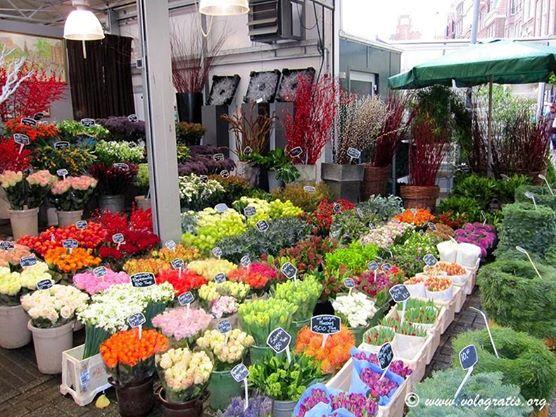 mercato dei fiori amsterdam