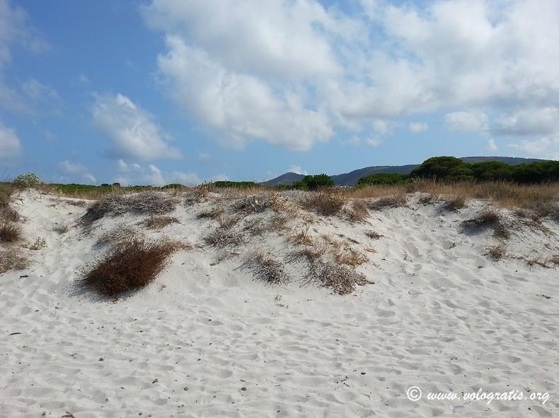 dune sa capannizza budoni vologratis