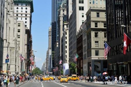 musei gratis a new york