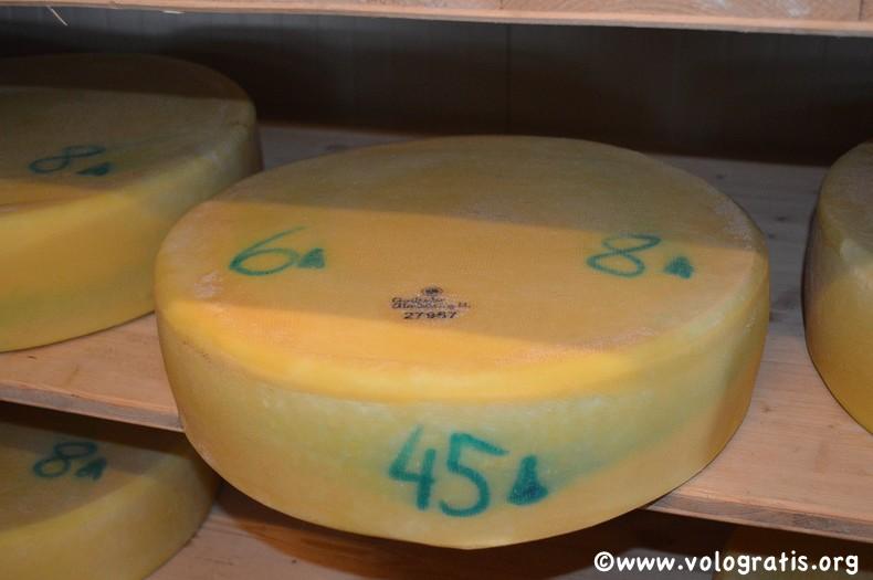 formaggio delle malghe