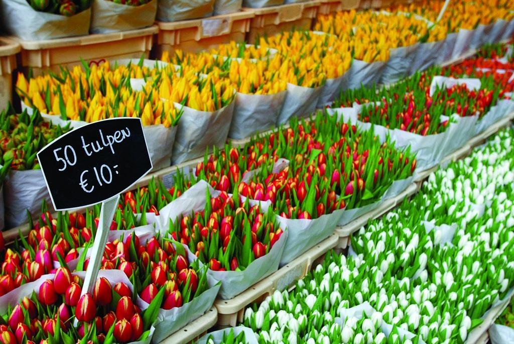 mercato dei fiori da non perdere ad amsterdam