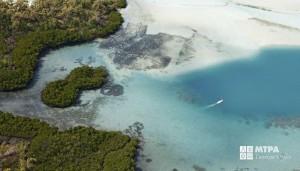 a mauritius