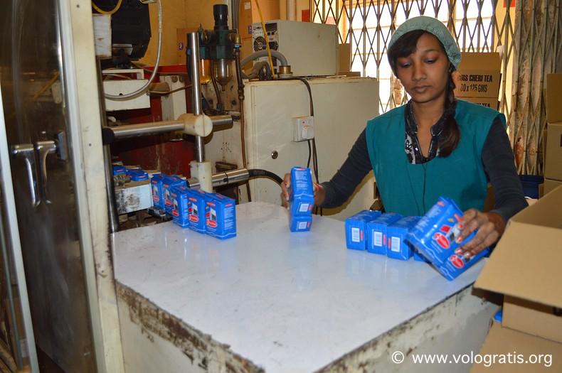 bois cherie tea factory mauritius