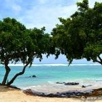 Diario di viaggio a Mauritius (seconda parte)