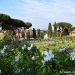 Il video del Roseto Comunale di Roma