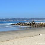Cosa vedere a San Diego: 10 luoghi imperdibili