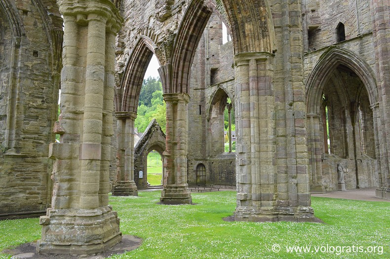 tintern abbey galles (3)