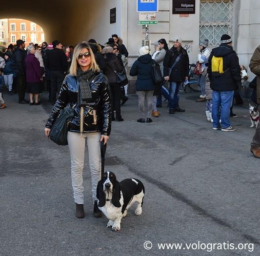 valentina vologratis con bassethound gastone a innsbruck