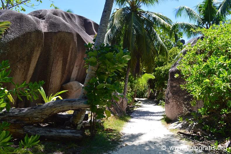 anse source argent la digue seychelles