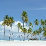 Vinci un viaggio alle Maldive