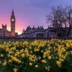 Concorso per vincere un viaggio a Londra