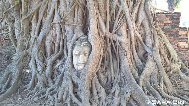 diario di viaggio in thailandia 33