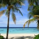 Dove andare in vacanza a gennaio