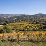 Cosa vedere in Toscana: 5 zone da non perdere