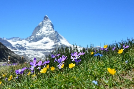 concorso per vincere una vacanza in svizzera