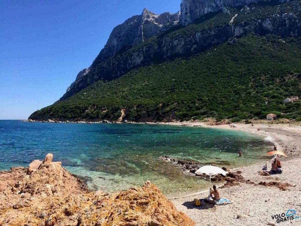 spiaggia isola di tavolara