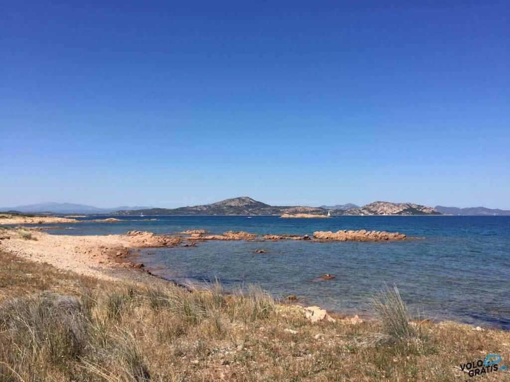 mare isola di tavolara