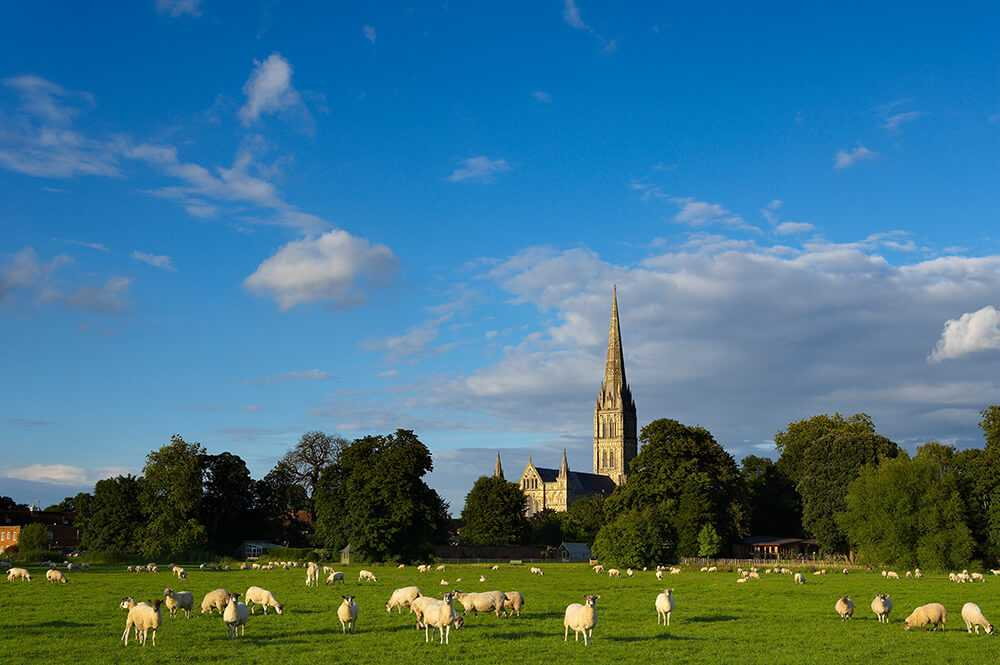 Cattedrale di Salisbury, Wiltshire
