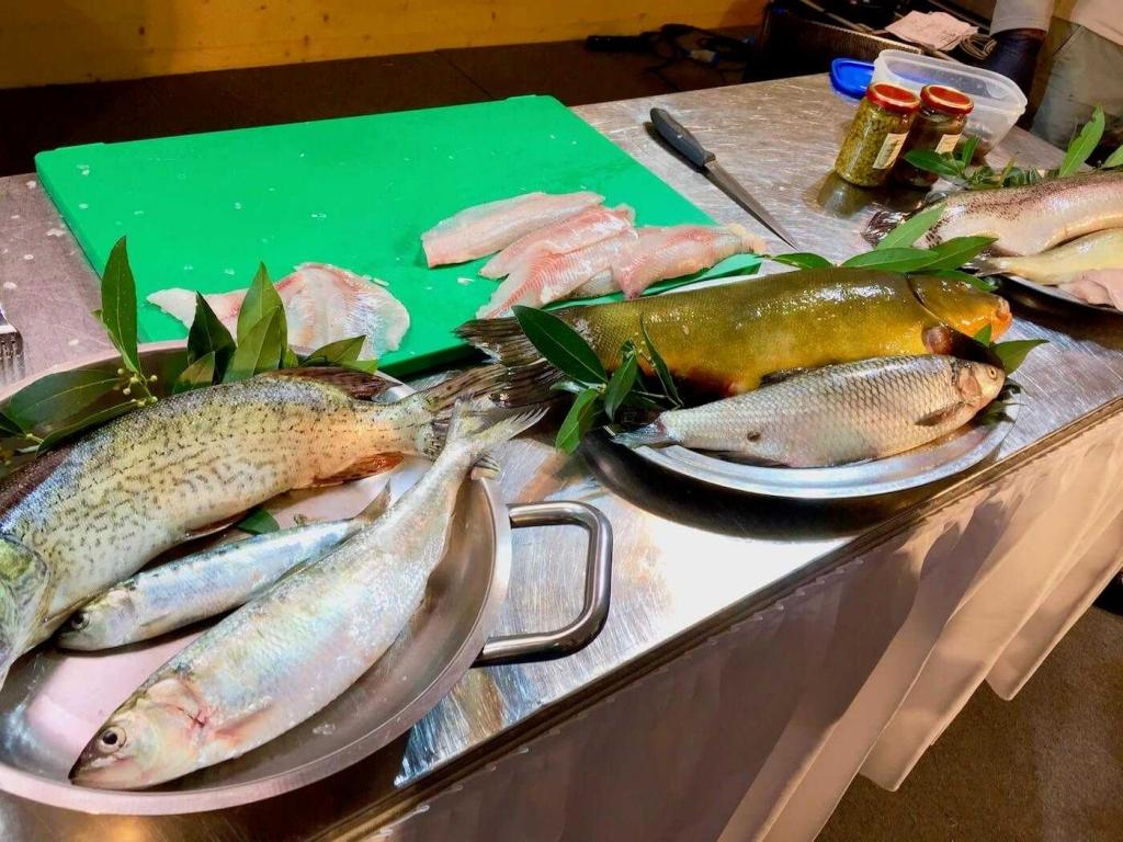cosa mangiare sul lago di garda pesce