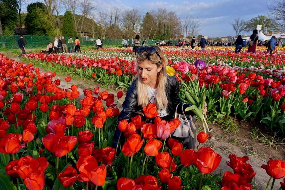 parco tulipani roma (5)