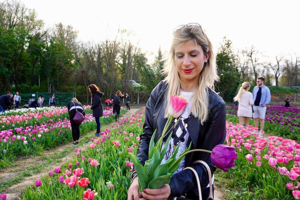 tulipark roma (29)