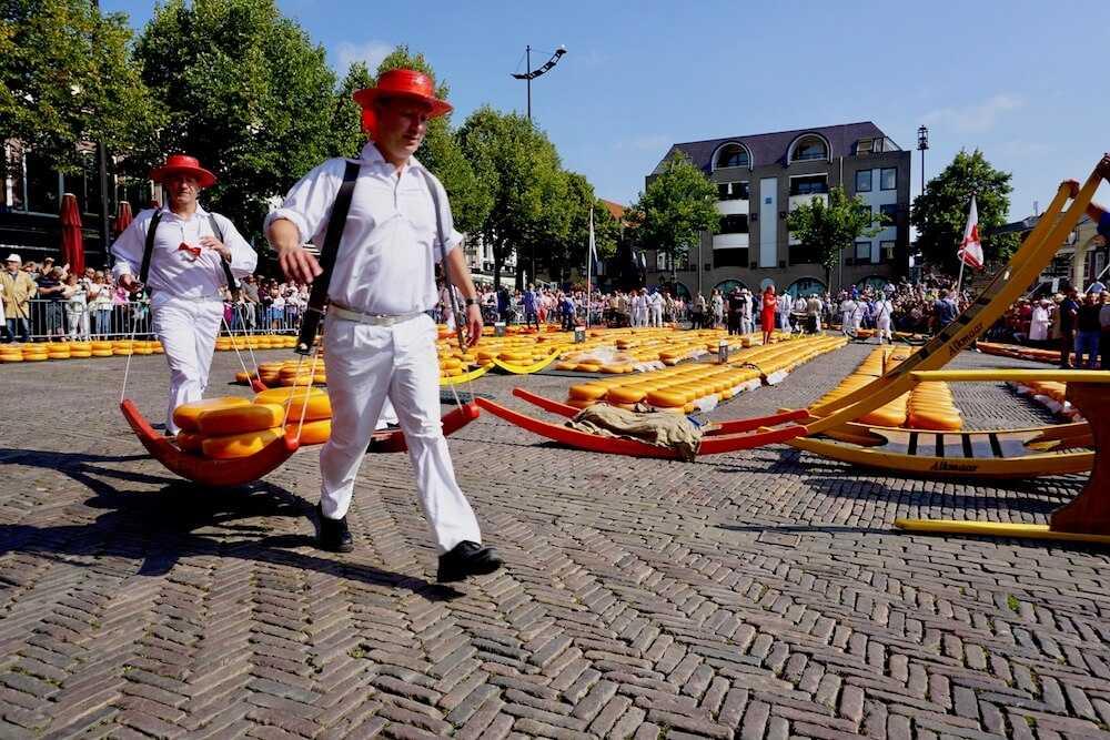 alkmaar mercato formaggio (2)