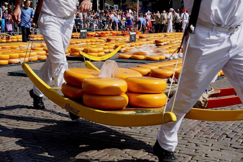 mercato formaggio alkmaar 2