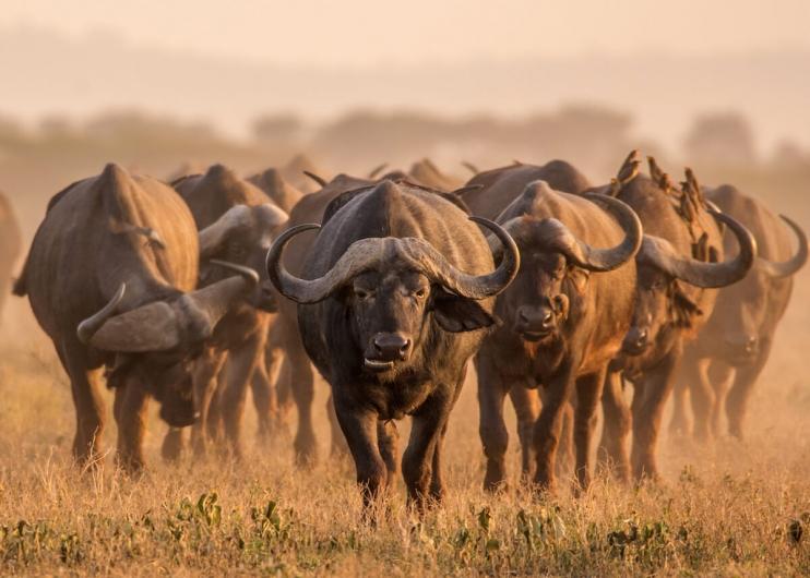 #10Sudafrica